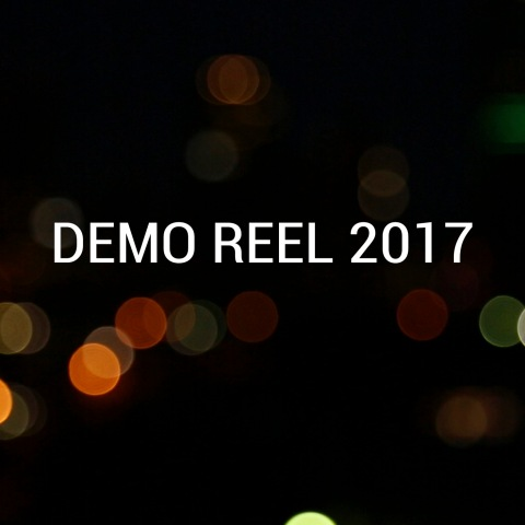 Demo Reel 2017 photo video